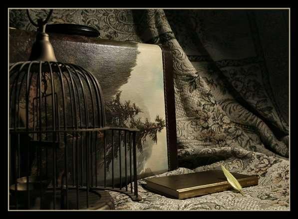 در کنج قفس بوده اگر، باز پریده است